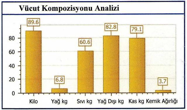 kaan'ın vücut kompozisyonu analizi