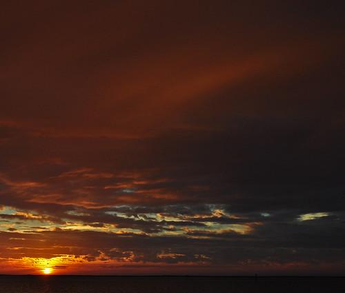 Metompkin Skies