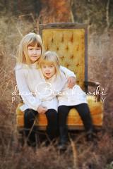 (Dawn Bienkowski) Tags: light sunset portrait fall texture field grass reeds golden chair nikon jessica nowhere session selectivefocus goldenrods d700 drossin