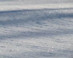 Snow Sparkles (DJM75) Tags: blue winter white snow chicago nature blizzard 2011