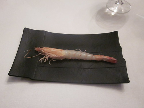 El Bulli - Roses - February 2011 - Boiled Shrimp