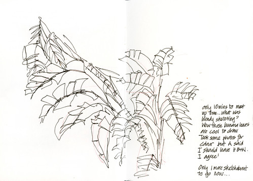 110409 Sketchabout 5_05 Banana Leaves