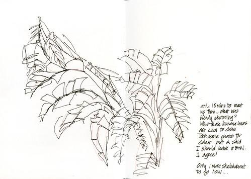110409 Sketchabout 5_05 Banana Leaves