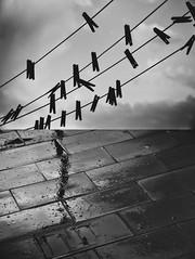 Cuando llueve las pinzas se ponen en huelga (Mishifuelgato) Tags: when rain starts go strike huelga pinzas ropa lluvia nikon d3200 1870mm agua water oscuridad dark tristeza dia lluvioso clothingclips sanvicentedelraspeig sadness darkness photooftheday pickoftheday alicante españa spain blancoynegro bw clouds nubes sky cielo