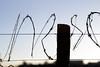(Marcus Vieira) Tags: cerca arame farpado perigo danger fence canon t3i 50mm 18 brasil brasília distrito federal asa norte