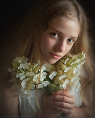 Natural Princess (Sonya Adcock Photography) Tags: girl child kid photography childphotography light evening glow warm family painterly portrait ray poetry poetic story nikon nikond700 nikkor nikkor105mmdc childhood fineart fineartphotography art sonyaadcockphotography flowers indoors moody