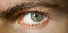 Buscadores de sentido (Boslok) Tags: eye blueeyes greeneyes yelloweyes iris look looking stare cosmos macro macrophotography enigmatic patterns