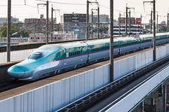 Tohoku Shinkansen E5 series 001 (A.S. Kevin N.V.M.M. Chung) Tags: train rail japan omiya jr shinkansen highspeedrailway