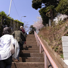 Stairway to the Katori Shrine 02