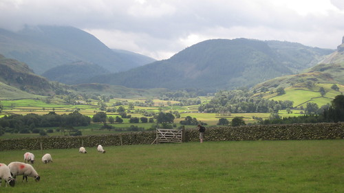 Looking towards High Rigg and the Helvellyn Range