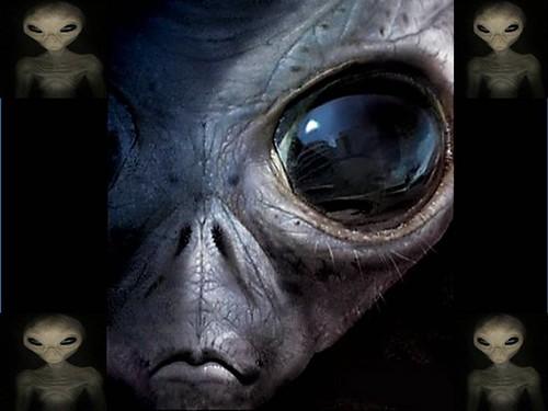 Aliens? Eles já vivem entre nós, afirmam cientistas