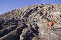 mount Bromo in Tengger massif in Semeru National Park.