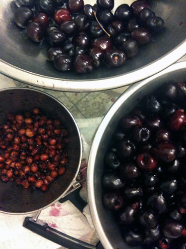 Cherries, for homemade jam