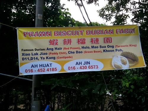 Durian Farm Banner