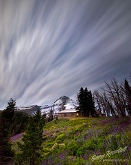 Mid Night Light (Gary Randall) Tags: longexposure flowers night oregon mthood wildflowers cluds mounthood hoodriver cooperspur cloudcapinn garyrandall dsc20743