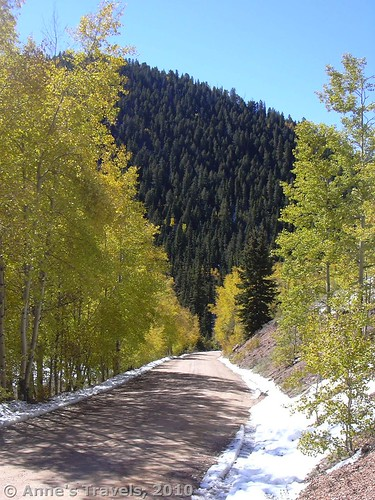 The road to Raspberry Mountain, Pike National Forest, Colorado