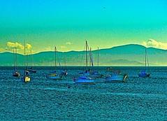 O repouso dos barcos - Florianpolis (SC) (Valcir Siqueira) Tags: seascapes barcos