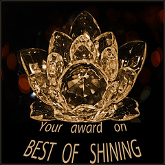 Award Best of Shining