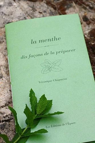 petit livre vert