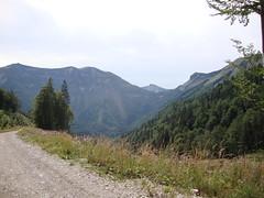 MTB-OSM-SPITZECK-00140 (kritimani) Tags: mountainbike mtb navigator wolfgangsee abersee kritimani bergradln knigsbergalm illingeralm zinkenbach spitzeck