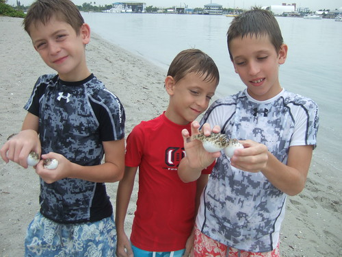boys and four puffers