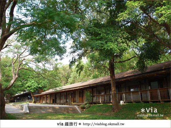 【彰化】彰化藝術高中~教室與森林結合的美麗校區7