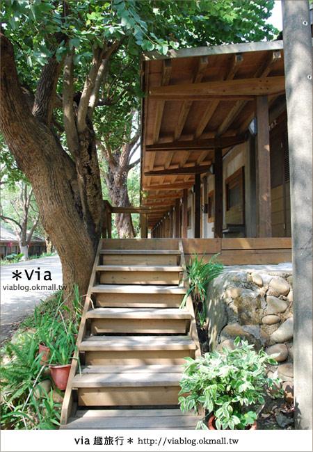 【彰化】彰化藝術高中~教室與森林結合的美麗校區13