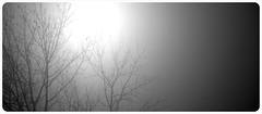 brumes en N&B (Magikphil) Tags: art home nature train vacances nikon europe photographie suisse pierre jardin lac bretagne jura porte paysage objet 2009 paysages philippe camerabag ch 2012 2010 vd montes iphone 2011 d90 pronatura lumière magicphil alterphil magikphil montesphilippe magicphilch