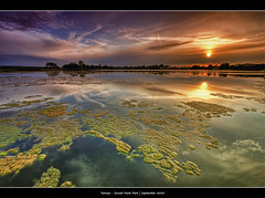 264/365 - HDR - Sunset.Poole.Park.@.1250x825.Frame (Pawel Tomaszewicz) Tags: camera new uk light sunset wallpaper england sky colors beautiful clouds photoshop canon photography eos photo bravo europe foto view angle image photos wide creative picture wideangle ps images x dorset 1200 fotografia 800 bournemouth hdr poole hdri anglia aparat iphone pawel zachd soca ipad chmury 3xp photomatix greatphotographers wyspa wyspy eos400d 1200x800 fotografowie polscy tomaszewicz paweltomaszewicz