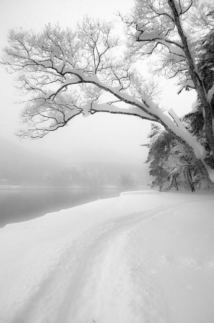 雪小径 ~木崎湖キャンプ場
