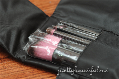 Lumiere  8pc Travel Brush Set