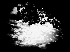 Astheleavesgentlyturn (catcalledmorris) Tags: autumn england sky blackandwhite sun white black fall leaves sunshine clouds manchester leaf shadows grain cl 2010 iphone endofsummer