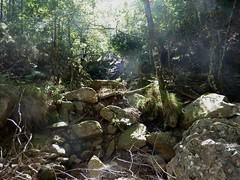 Entre la confluence Calva et le Castellucciu : retour à la tranchée du Finicione