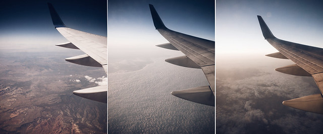 wing_triptych