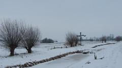 last winter in Holland (traveler NimsU) Tags: snow cold netherlands landcape winterinholland