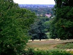 View from Pembroke Lodge, Richmond Park.