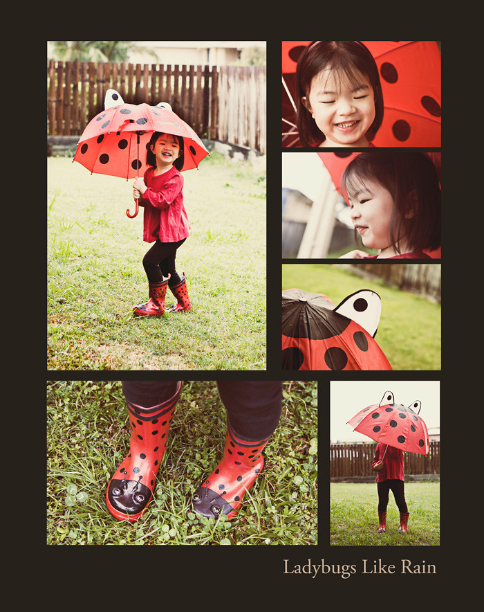 Photo A Day September - Day 20 - Ladybugs Like Rain