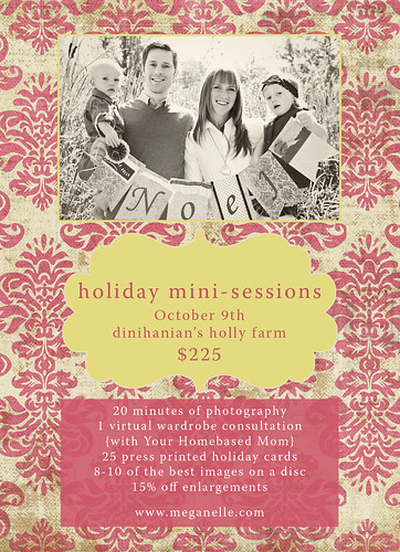 Flier mini sessions resize
