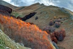 Monti Gemelli - Il Vallone