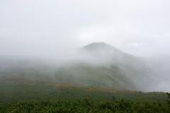 円山は円かった