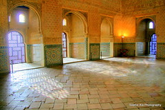 alhambra (Sophie Summer) Tags: vacation building architecture spain muslim palace espana alhambra granada historical intricate sophiexia 201008