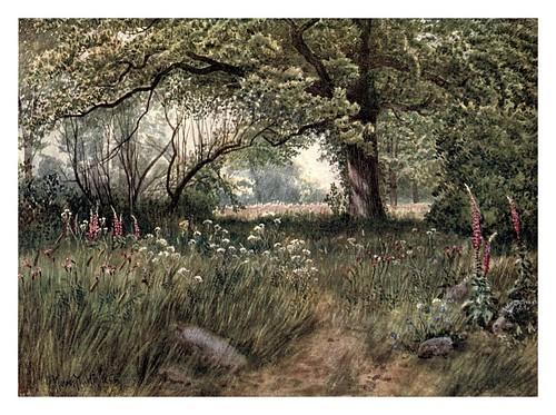 007-Alrededores de la cabaña de la reina-Kew gardens 1908- Martin T. Mower