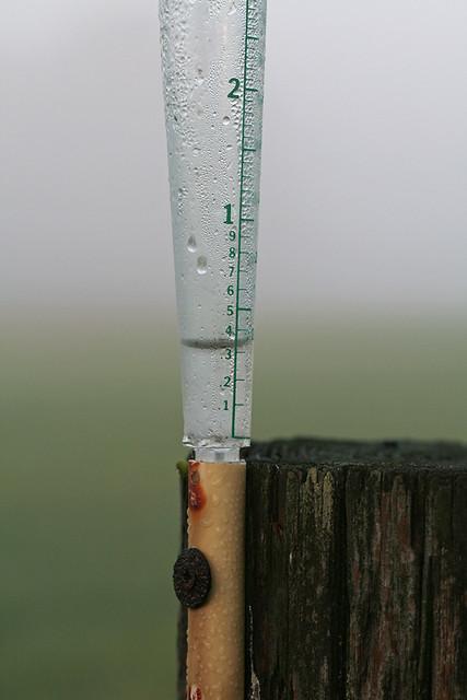IMG_1837 Rain