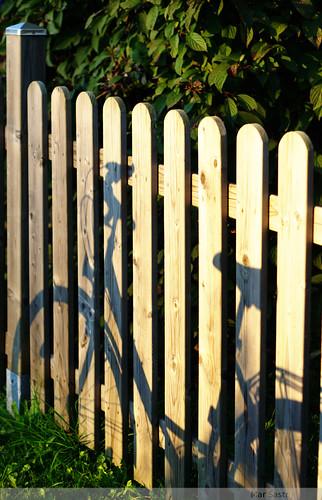 bike/fence