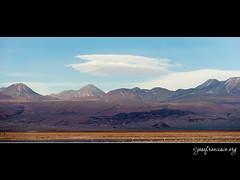 Salar de Atacama [2320] (josefrancisco.salgado) Tags: chile sky cloud bird fauna clouds nikon desert flamingo ave cielo nubes desierto nikkor salar cl flamenco nube d3 pájaro sanpedrodeatacama salardeatacama saltflat desiertodeatacama orographic atacamadesert repúblicadechile 70300mmf4556gvr reservanacionallosflamencos republicofchile iiregióndeantofagasta orográfica provinciadeelloa