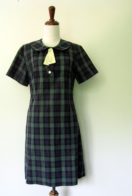 Vintage Teacher's Pet Dress
