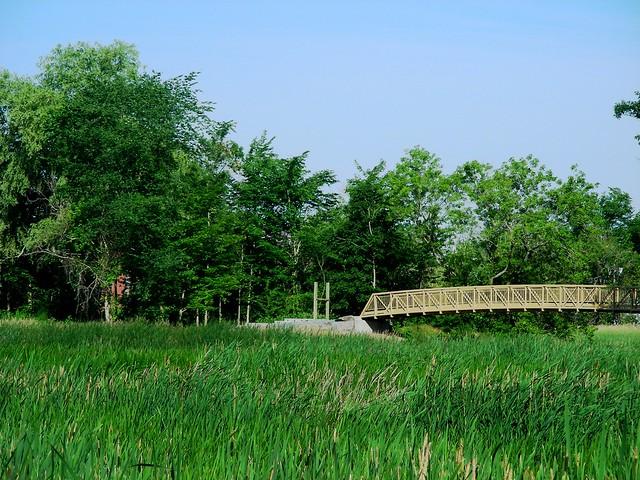#59 - Bridge