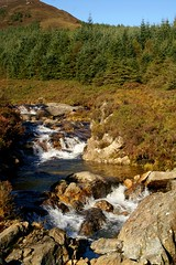 NorthGlenSannoxWater14 (Assja) Tags: autumn mountains fall water leaves forest landscape golden scotland highlands rocks stream heather herbst glen hills naturereserve valley bracken rowan isleofarran birches indiansummer birchtree schottland wirbel herbststimmung ruska naturreservat hochland wildbach zauberwald birkenwald farnkraut heidekraut ebereschen torfmoor remarkabletrees feenwald wildpfad thebrackenisgoldinthesun northendofarran subarktischestimmung