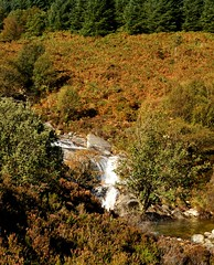 NorthGlenSannoxWater4 (Assja) Tags: autumn mountains fall water leaves forest landscape golden scotland highlands rocks stream heather herbst glen hills naturereserve valley bracken rowan isleofarran birches indiansummer birchtree schottland wirbel herbststimmung ruska naturreservat hochland wildbach zauberwald birkenwald farnkraut heidekraut ebereschen torfmoor remarkabletrees feenwald wildpfad thebrackenisgoldinthesun northendofarran subarktischestimmung