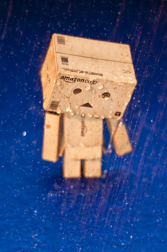 Danbo Rain